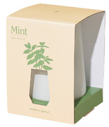 Modern Sprout White Tapered Tumbler Mint