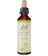Bach Wild Oat Flower Essence