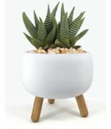 Natural Living Trino Round Planter White