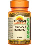 Sundown Naturals Echinacea Purpurea