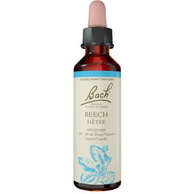 Bach Beech Flower Essence