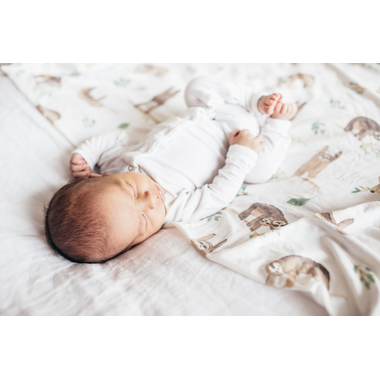 Copper Pearl Noah Swaddle Blanket