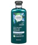 Herbal Essences bio:renew Conditioner Scalp Balance Deep Sea Minerals