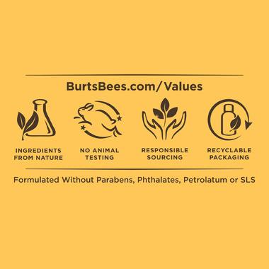 Burt\'s Bees 100% Natural Origin Moisturizing Lip Balm Chai Tea