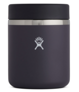 Pot à nourriture isolé Hydro Flask Blackberry