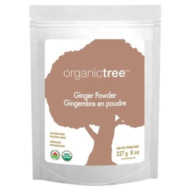 OrganicTree Organic Ginger Powder