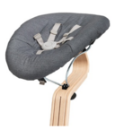 Nomi Baby Base 2.0 Black with Gray Cushion
