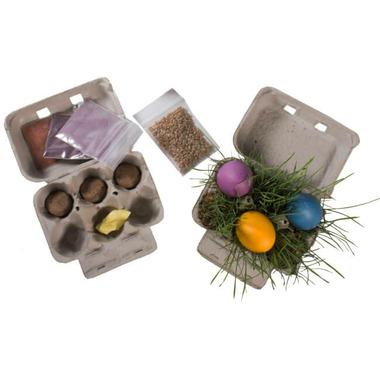 Eco-Kids Eco-Eggs Kit