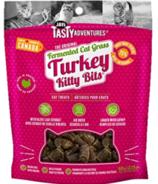 Jay's Tasty Adventures Fermented Cat Treats Turkey