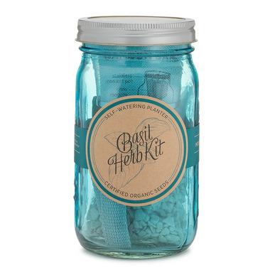 Modern Sprout Garden Jar Basil