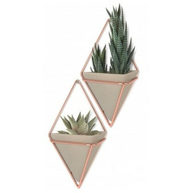 Umbra Trigg Wall Vessel Small Set of 2 Concrete/Copper