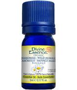 Divine Essence Wild Moroccon Chamomile Organic Essential Oil
