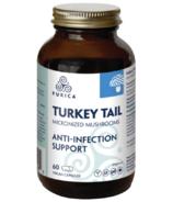 Purica Turkey Tail