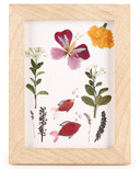 Kikkerland Huckleberry Make Your Own Pressed Flower Frame
