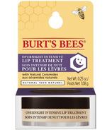 Burt's Bees Overnight Lip Treatment