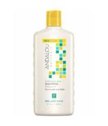 ANDALOU naturals Shampooing BRILLIANT SHINE tournesol et agrumes