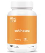 HEAL + CO. Echinacea