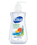 Dial Hand Soap With Moisturizers Tangerine & Guava