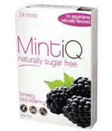Mint iQ Breezy Blackberry