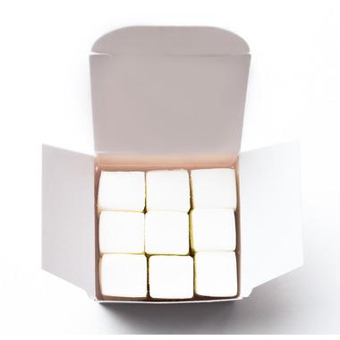 EarthSuds Shampoo Pack White Tea Ginger Scent