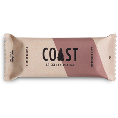 Coast Protein Dark Chocolate Raisin Cricket Bar