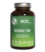 AOR Borage 500