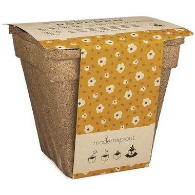 Modern Sprout Garden Drop-In Kit Popcorn