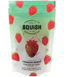 SQUISH Strawberry Rhubarb Gourmet Candy
