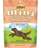 Zuke's Dog Mini Naturals Salmon Formula