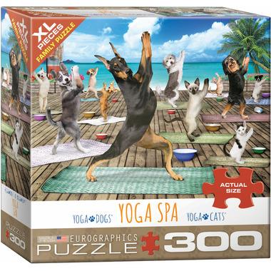 Eurographics Yoga Spa