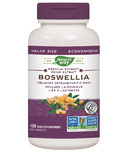 Nature's Way Boswellia Standardized Extract