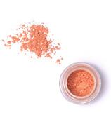 Elate Clean Cosmetics Twinkle Loose Powder Eye Colour
