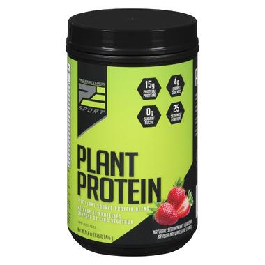 PaleoEthics Sport Plant Protein Powder Strawberry