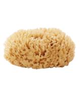 Well Kept Wool Sea Sponge Large