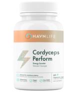 HAVNLIFE Cordyceps Perform