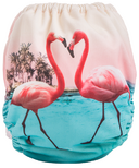Funky Fluff Swim Diaper Flamingos