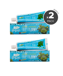 Green Beaver Frosty Mint Natural Toothpaste Bundle
