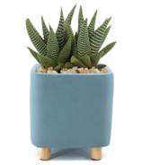 Natural Living Quatu Square Planter Small Light Blue