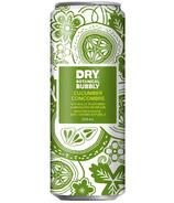 Dry Soda Co. Botanical Bubbly Cucumber