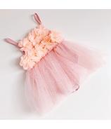Bluish Baby Ellie Onesie Dress Pink