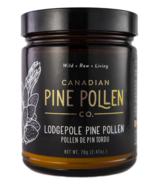 Canadian Pine Pollen Lodgepole Pine Pollen