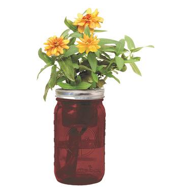 Modern Sprout Garden Jar Zinnia