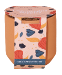 Modern Sprout Tiny Terracotta Champagne Poppies