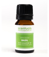 Scentuals Pure Essential Oil Sweet Basil (Ocimum Basilicum)