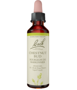 Bach Chestnut Bud Flower Essence