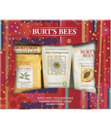 Burt's Bees Face Essentials Kit