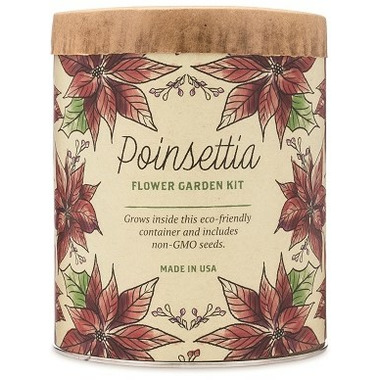 Modern Sprout Waxed Planter Poinsettia