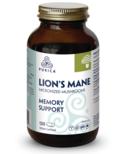 Purica Lion's Mane Large