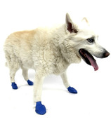 Pawz Natural Rubber Dog Boots