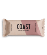 Coast Protein Chocolate Chip Cricket Energy Bar